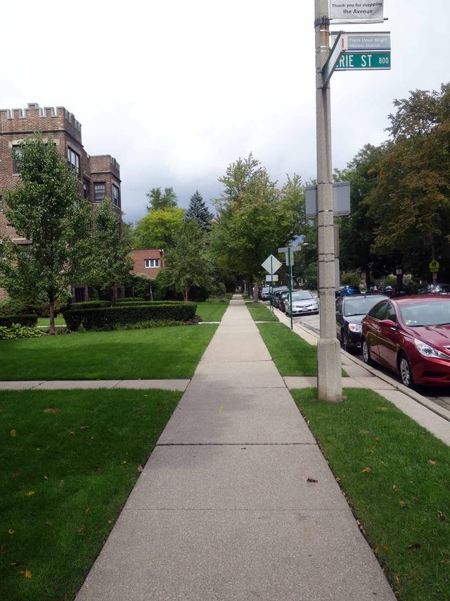 Oak Park Ave 1_edit