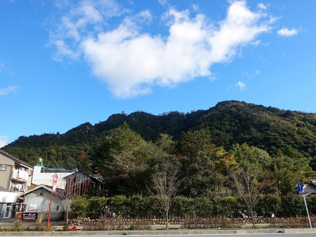 金華山 2_edit
