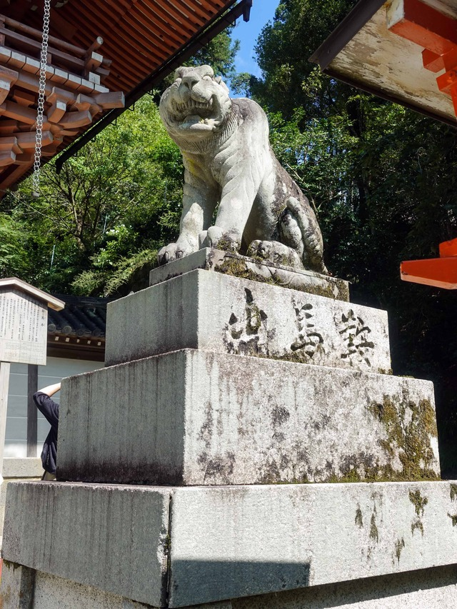 仁王門前の狛虎 2_edit