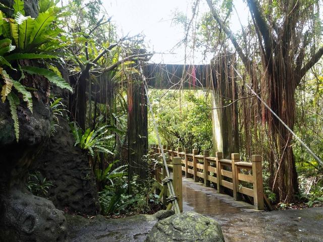 アジア熱帯雨林区 7_edit