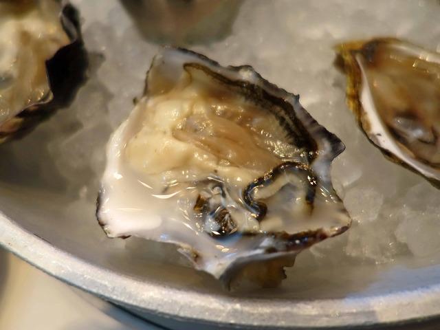 Fresh Oysters 5_edit