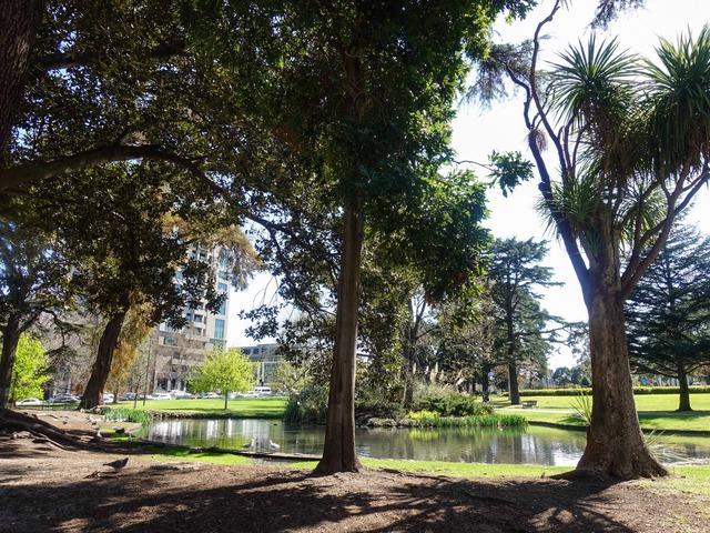 カールトン庭園 7_edit
