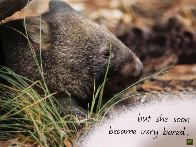 Wombat's Friend 11_edit