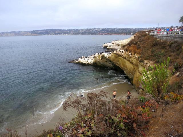 La Jolla Cove  16_edit