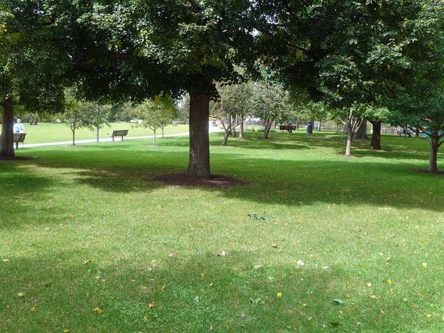 Scoville Park 5_edit