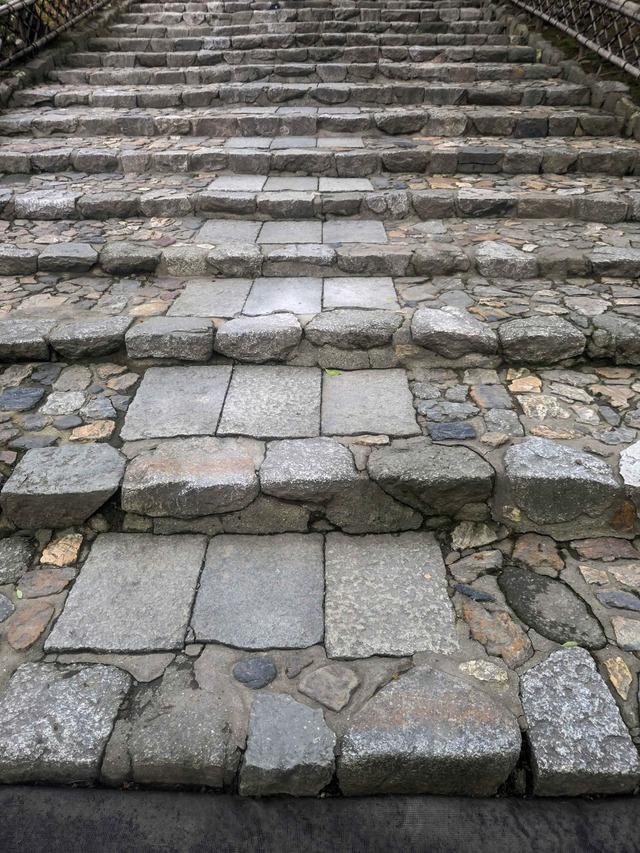 方丈庭園への石段_edit