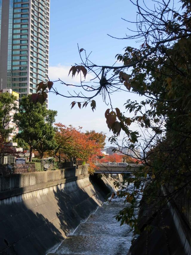 新神戸駅前の新生田川 1_edit