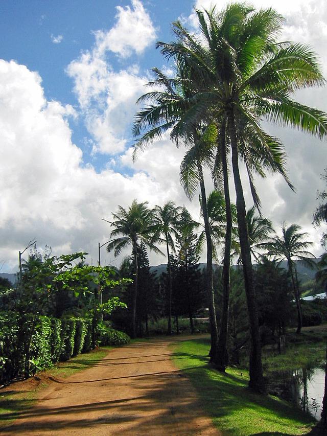 Polynesian Cultural Center 3_edit