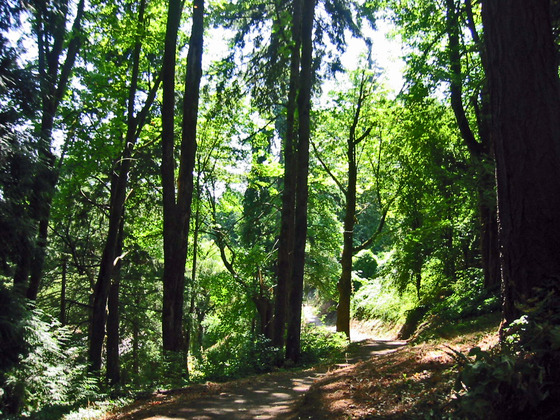 Washington Park 内 1_edit