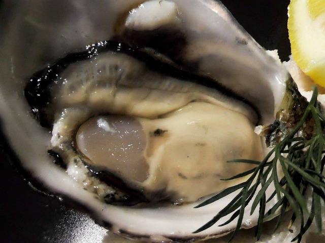 Oysters (natural) 3_edit