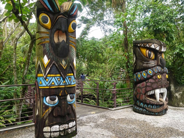 アジア熱帯雨林区 12_edit