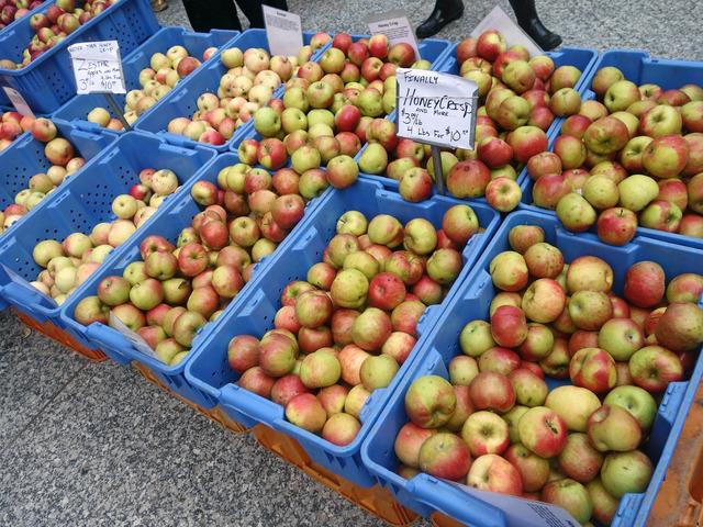 リンゴ 2_edit