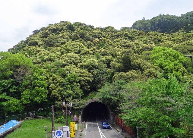 金華山トンネル 2_edit