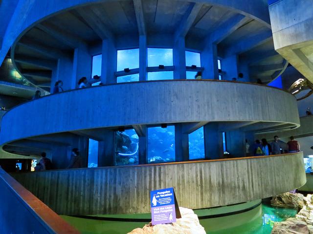 Giant Ocean Tank 1_edit