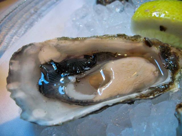Oyster Sampler 4_edit