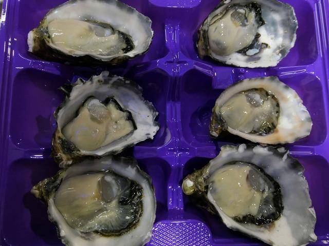 Coffin Bay Oyster 1_edit