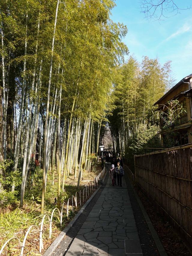 竹林の小径 19_edit