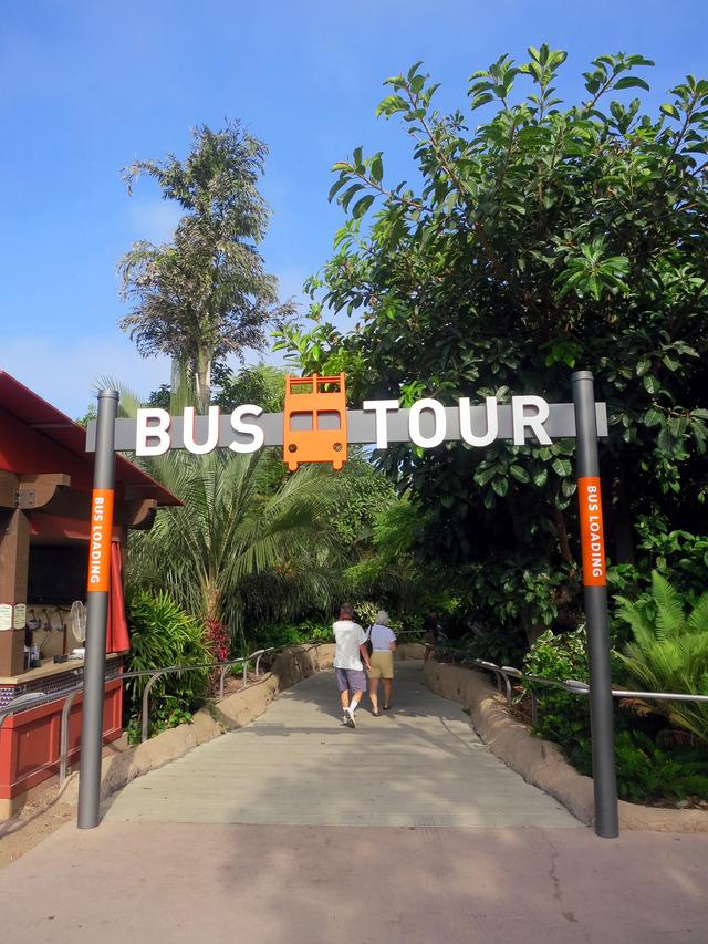 Bus Tour 2_edit