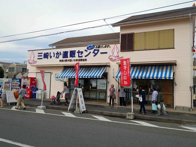 三崎いか直販センター_edit