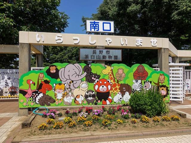 茶臼山動物園_edit