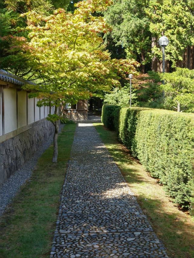 新渡戸記念庭園の東側の小路 1_edit