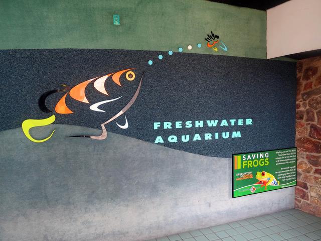 Freshwater Aquarium 2_edit