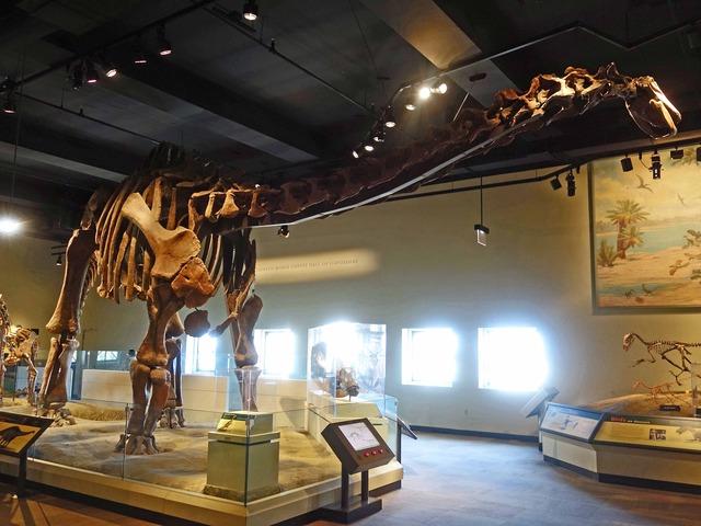 Rapetosaurus 2_edit