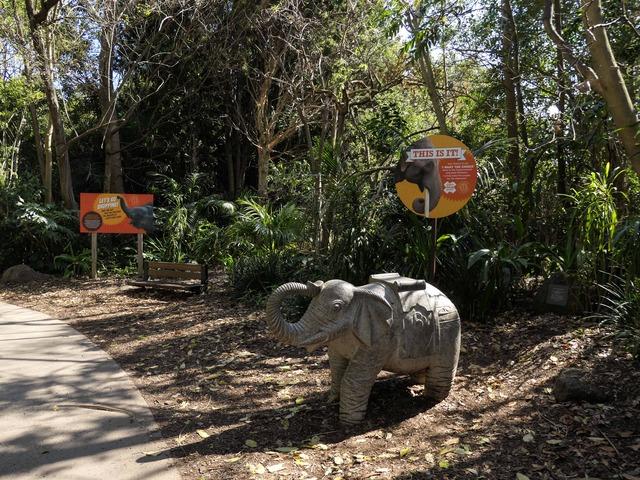 Trail of the Elephants 1_edit