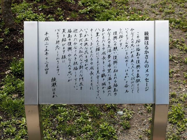 綾瀬はるかさんのメッセージ_edit