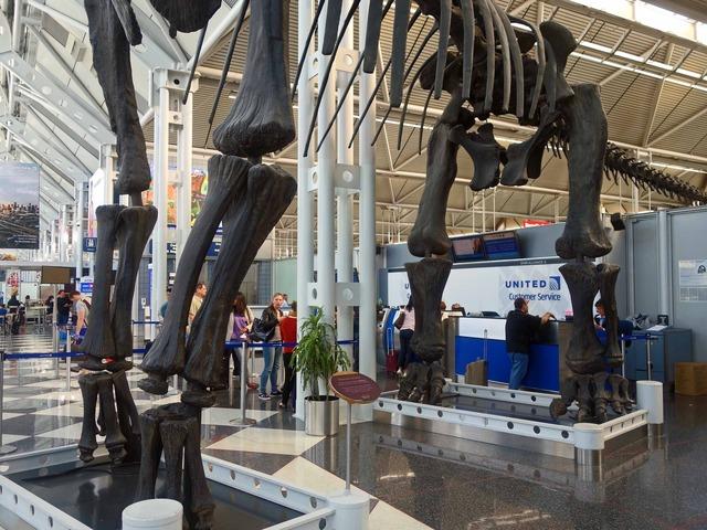 ブラキオサウルスの骨格標本 7_ターミナル 1 Bゲート_edit