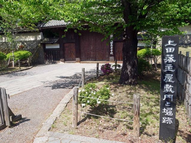 上田藩主屋敷門と堀跡 2_edit