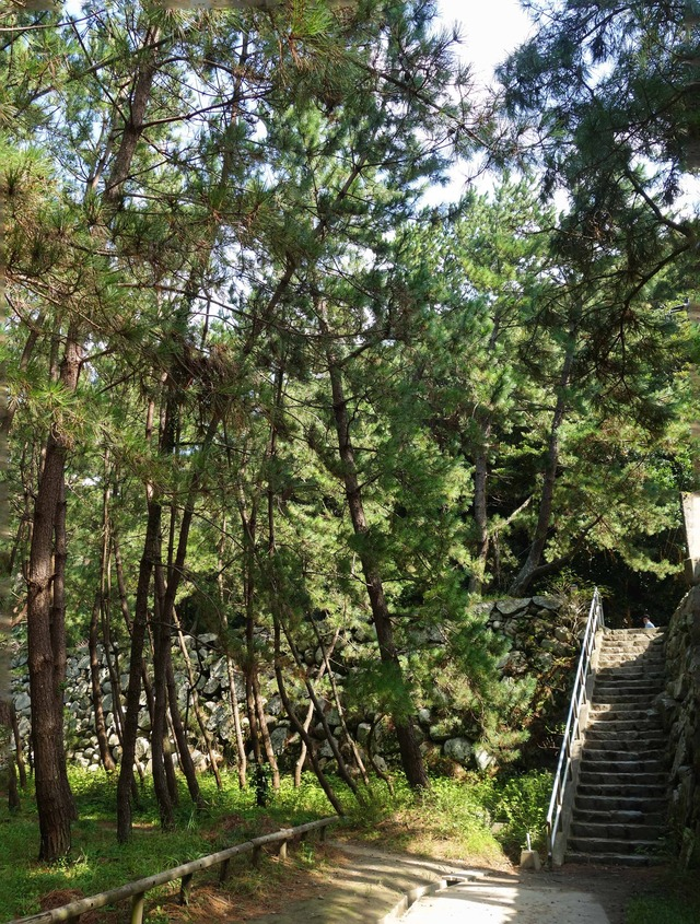 唐津城下の散歩道 5_edit