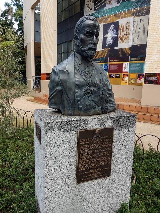 Ferdinand von Mueller の胸像_edit