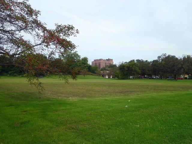 Midway Plaisance Park 2_edit
