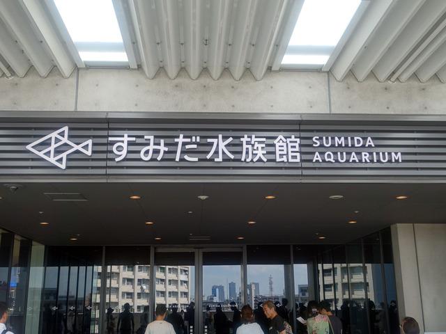 すみだ水族館 3_edit
