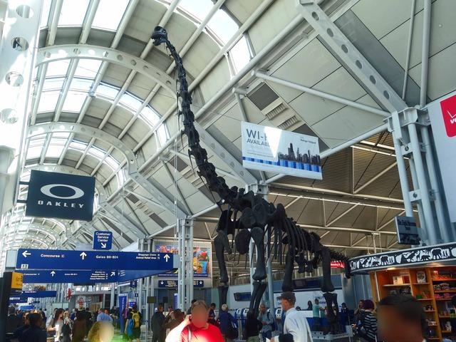 ブラキオサウルスの骨格標本 10_ターミナル 1 Bゲート_edit