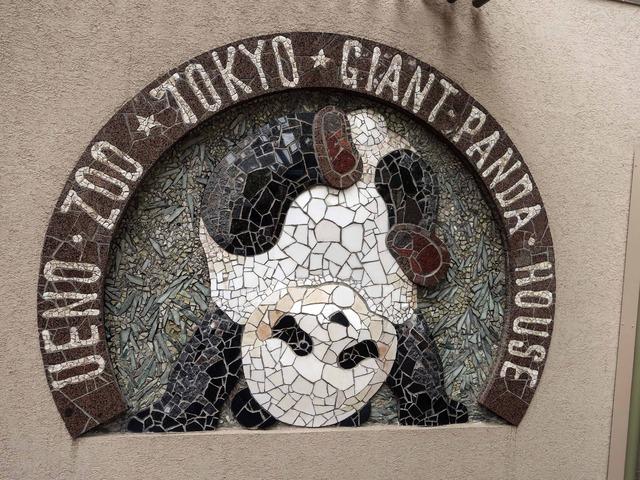 ジャイアント・パンダ 1_edit