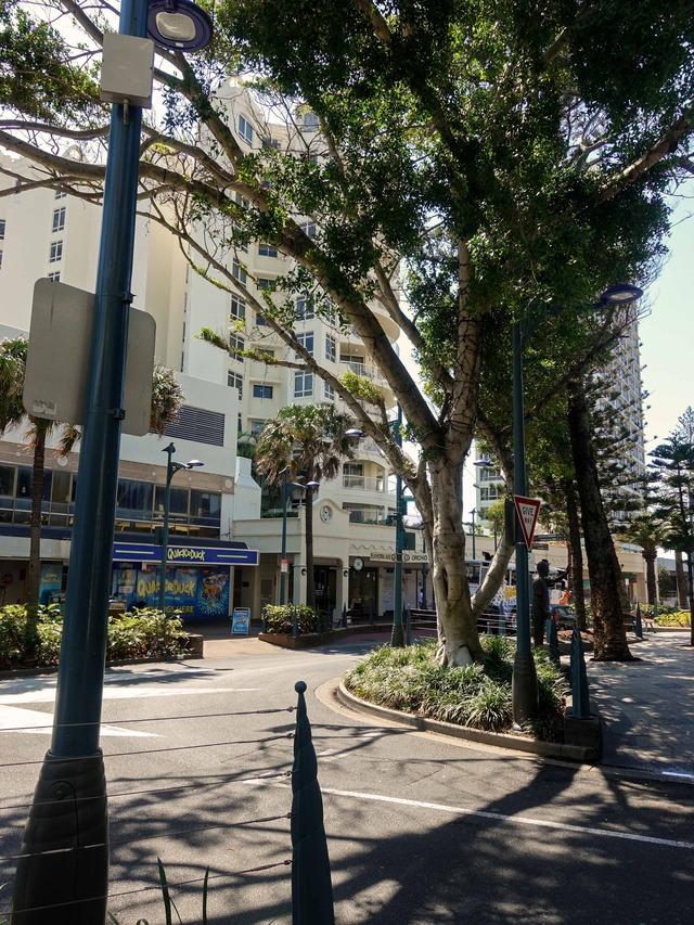 Orchid Ave と Elkhorn Ave の交差点_edit
