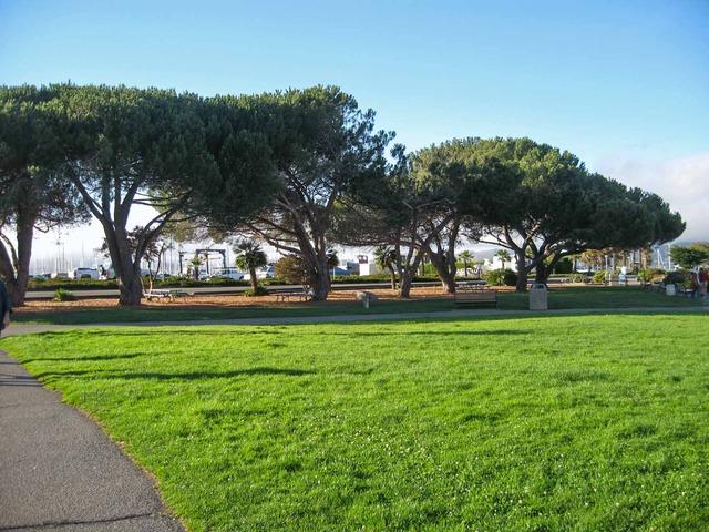 Gabrielson Park 1_edit