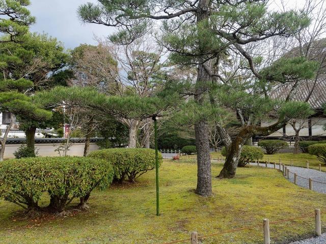 平等院庭園 1_edit