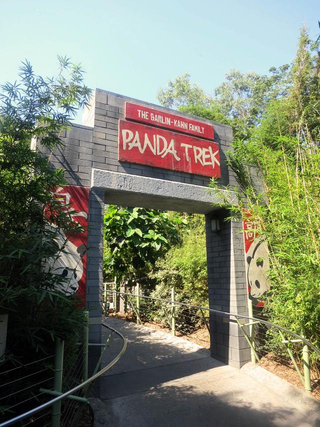 Panda Trek 2_edit