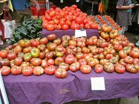 Heirloom Tomato 2_edit
