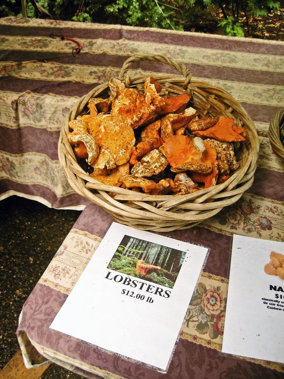 Lobster Mushrooms_edit