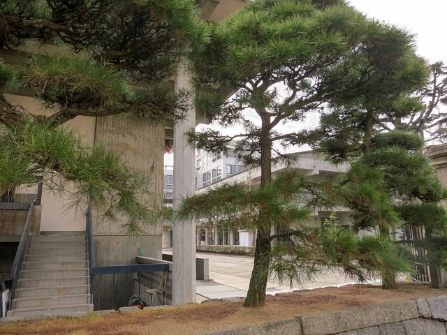 県立丸亀高校 5_edit