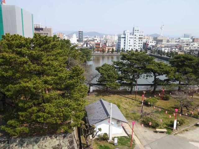松の丸跡から東堀を望む 1_edit