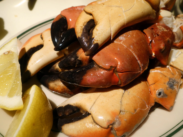 Pacific Rock Crab Claws 3_edit