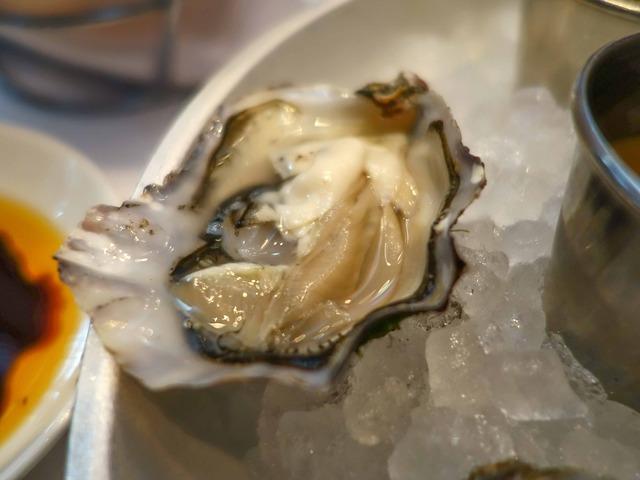 Fresh Oysters 4_edit