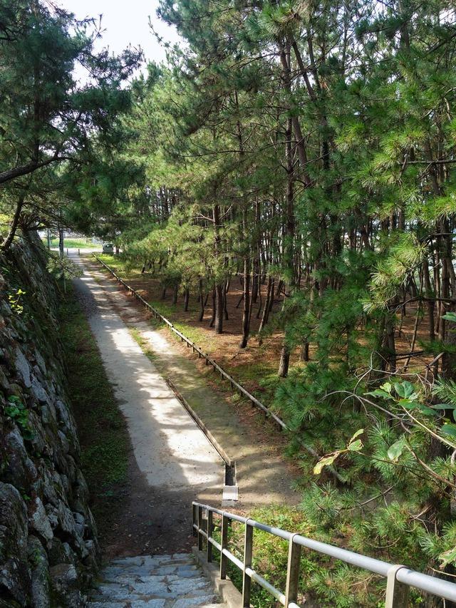 唐津城下の散歩道 3_edit