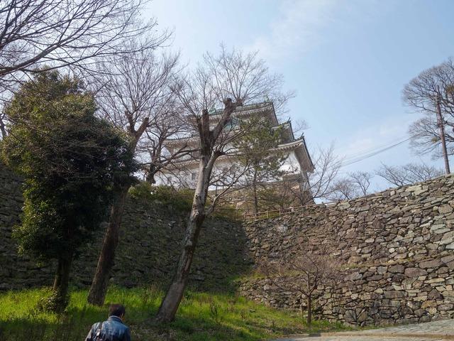 松の丸跡から天守閣を望む 1_edit