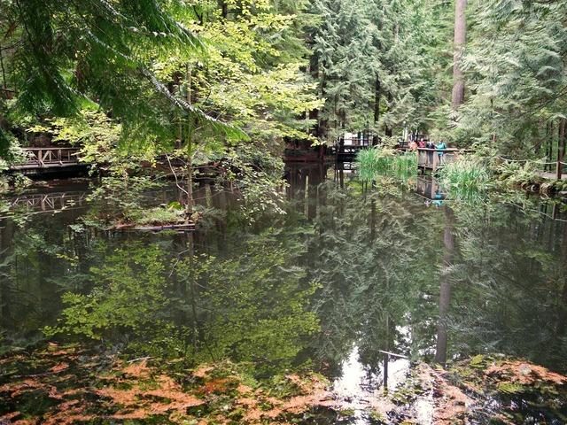 Trout Pond 8_edit